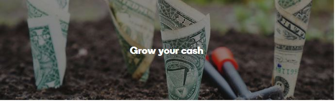 Grow Your Cash